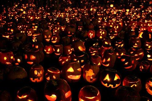 Halloween Party Pumpkins